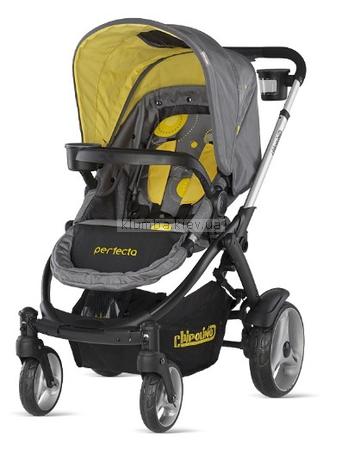 Детская коляска Chipolino Perfecta