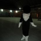 Прокат Новогоднего костюма кошки, кошечки, комбинезон!