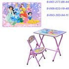 """Детский столик со стульчиком складной """"Принцессы"""" DT 19-4"""
