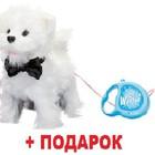Интерактивный щенок Вести на поводке. Топ продаж. Интерактивная игра в подарок