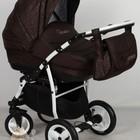 Детская универсальнавя коляска 2 в 1 Aneco Venezia цвет: 10, темно-коричневый. Польша