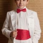 Шикарные галстук-бабочки для юных джентльменов - много цветов