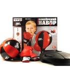Детский боксерский набор MS 0331,0332,0333 (боксерская груша и перчатки)