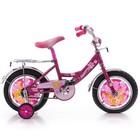 Детский двухколесный велосипед для девочки Mustang Princess 12″-20″ Мустанг Принцесса