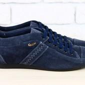 Спортивные туфли Lacoste синие, р. 43.44.45, натур. замша, код nvk-1699
