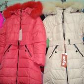 Пальто для девочек ( зима)