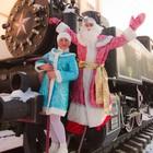 Заказ Деда Мороза на дом Киев недорого