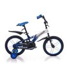 Азимут Райдер  12 14 дюймов Azimut Rider детский двухколесный