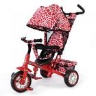 Велосипед трехколесный Tilly Zoo trike Zebra
