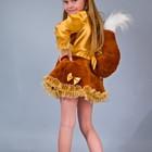Прокат-продажа карнавальный костюм  Киев-Борисполь костюм белочки