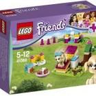 Lego Friends Конструктор Дрессировка, Жеребенок, Зайка и малыши  щенка