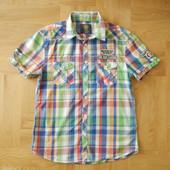164-170 отличная тениска фирменная хлопок. Длина - 71 см, ширина - 51 см, плечи - 48 см, ширина рука