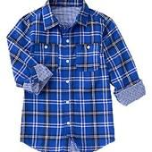 Новая рубашка Crazy8, р-р 10-12 лет