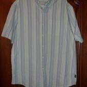 Рубашка летняя большого размера Cotton Traders
