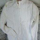 Блуза белая Gap