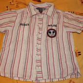 Фирменные рубашечки Disney одна на выбор УП 8 грн