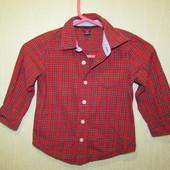 4 года (104-110 см). baby Gap. рубашка НГ1