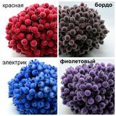 Калина сахарная для декора и рукоделия расцветки