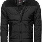 Мужская зимняя куртка Stegol