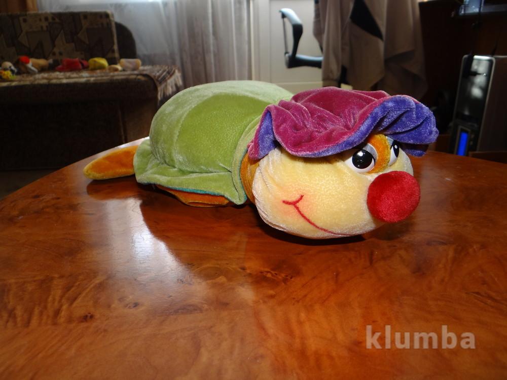 черепаха фото №1