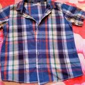 рубашка в клетку 11-13 лет