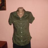 рубашка,блуза H&M р-р 38,коттон
