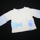 Реглан для малыша