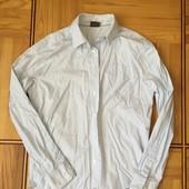 Мужская рубашка Esprit, размер М
