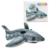 Плотик 57525 акула