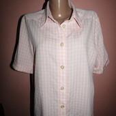 рубашка,блуза р-р 14 сост новой