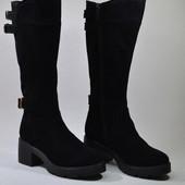 Модные женские замшевые сапоги/демисезон зима Модель: Пилар-S