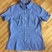 Рубашка блузка от d&g! p.-m! Оригинал!
