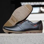 Туфли Braxton, р. 40-45, натур. кожа, черн, коричн, код gavk-10058