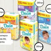 Dada XXL