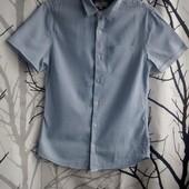 Pубашка Next, евро размер S, на наш 42-44, 100% хлопок