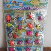 Растушки , морские животные.