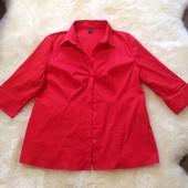 Рубашка к Рождеству 16р США