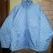 Куртка мужская деми стеганая