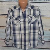 Рубашка Rebel 5-6 лет. Клетчатая, в клетку,  с рисунком, на спине, принт, принто