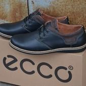 Мужские туфли Ecco натур кожа