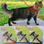 Поводок для кота/собаки, 3 цвета, новый