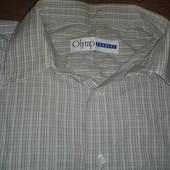 Рубашка мужская Olymp.