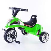Трехколесный велосипед Profi Trike Titan M 5345
