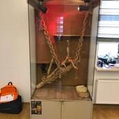 Продам террариум для игуаны