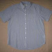 Canda (XL) мужская рубашка
