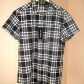Рубашка Cedarwood state (Primark), Германия