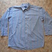 Рубашка с дл. рукавом 58-60 в полоску