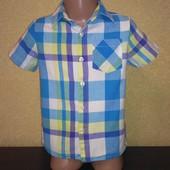 Рубашка Cherokee (Чероки), на 4-5 лет