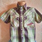 Рубашка с коротким рукавом  Next  для мальчика на 5 лет ( 110)