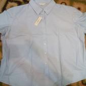 Рубашка 70% котон Состояние - новое, Размер - XL